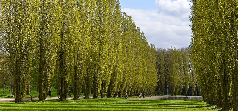 Parc aux alentours de Chatillon